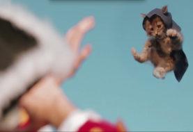 Assassin's Kittens Unity, un nuovo simpatico cortometraggio