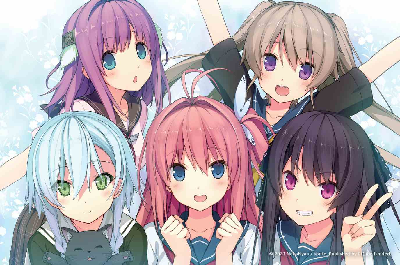 Aokana group