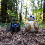 BB-8 Foresta