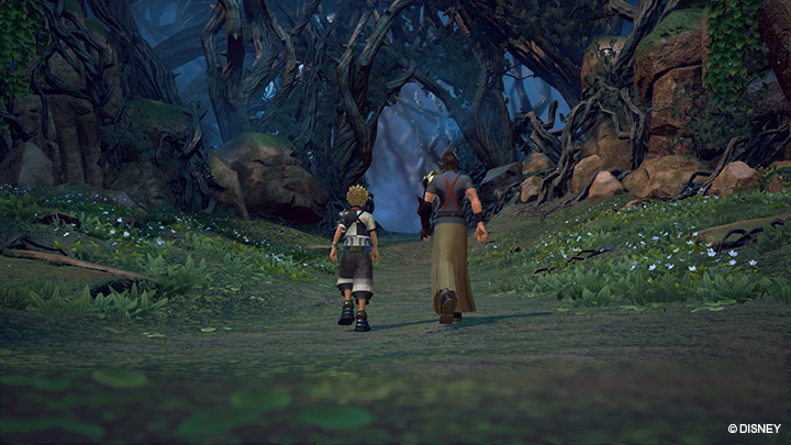 Lista trofei Kingdom Hearts: Dream Drop Distance HD e Kingdom Hearts 0.2 Birth by Sleep - A fragmentary passage
