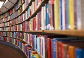 Videogames e biblioteche: il giusto connubio tra divertimento e cultura