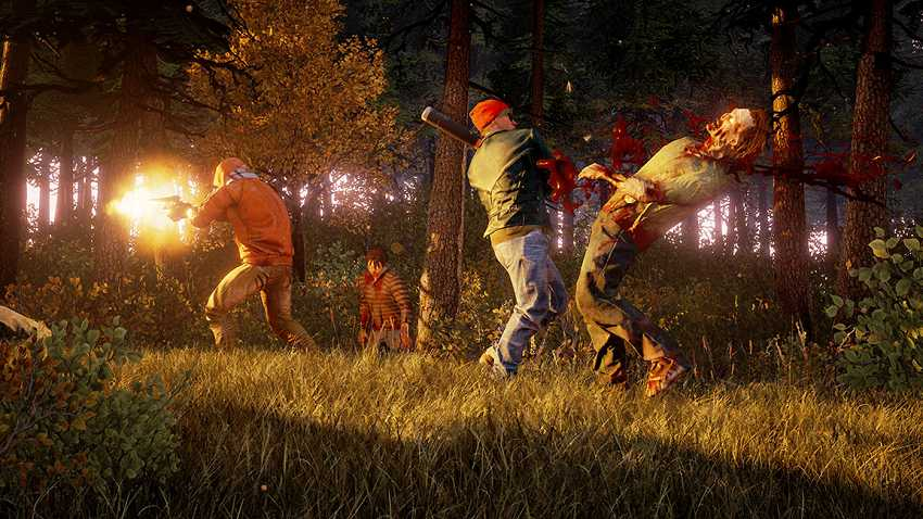 State of Decay 2 cooperativa