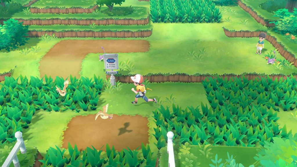 Pokémon ottava generazione