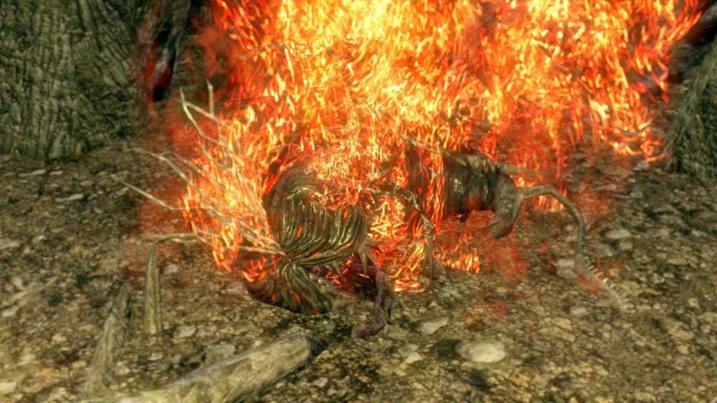 Dark Souls Culla del Caos