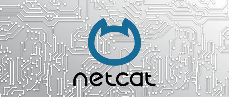 Netcat security vulnerability colpisce Intel Xeon