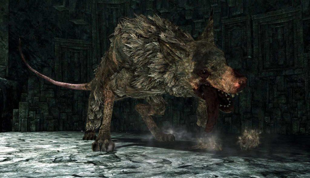 Dark Souls 2 Autorità Reale dei Topi