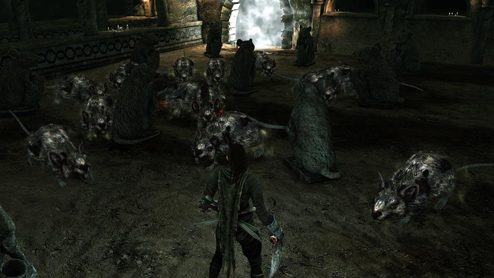 Dark Souls 2 Avanguardia Reale dei Topi