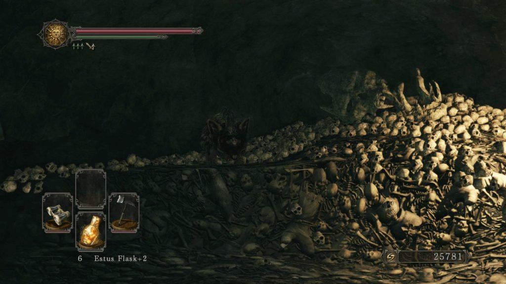 Dark Souls 2 Re Ratto