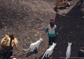 Final Fantasy VII Remake: Dove trovare i gatti