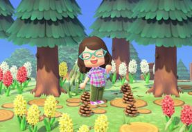 Animal Crossing: New Horizons - Guida alle pigne