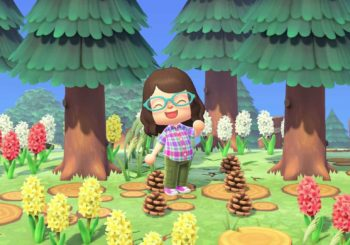Animal Crossing: New Horizons - Guida alle pigne